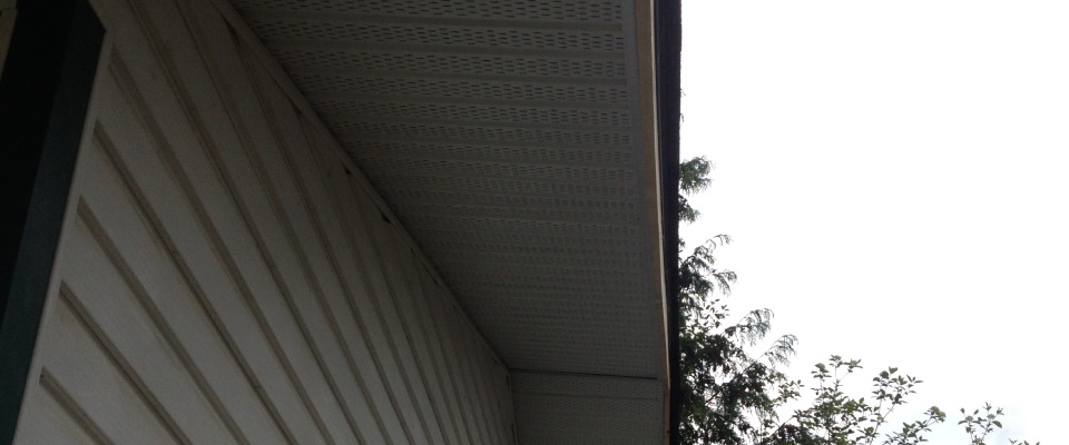siding and soffits of house